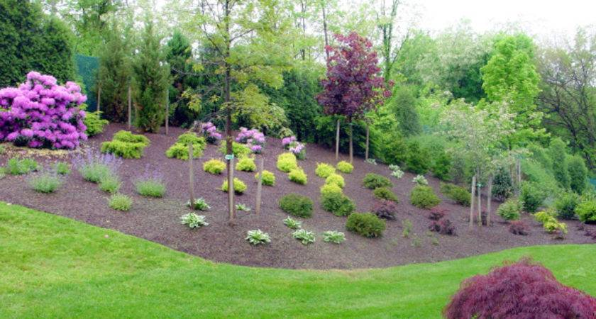 Beautiful Front Yard Landscaping Insider Secrets