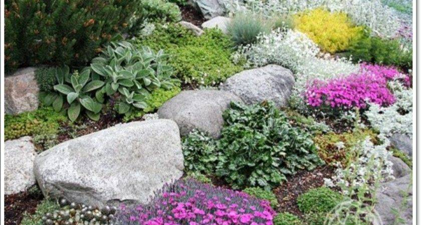 Beautiful Rock Garden Design Ideas