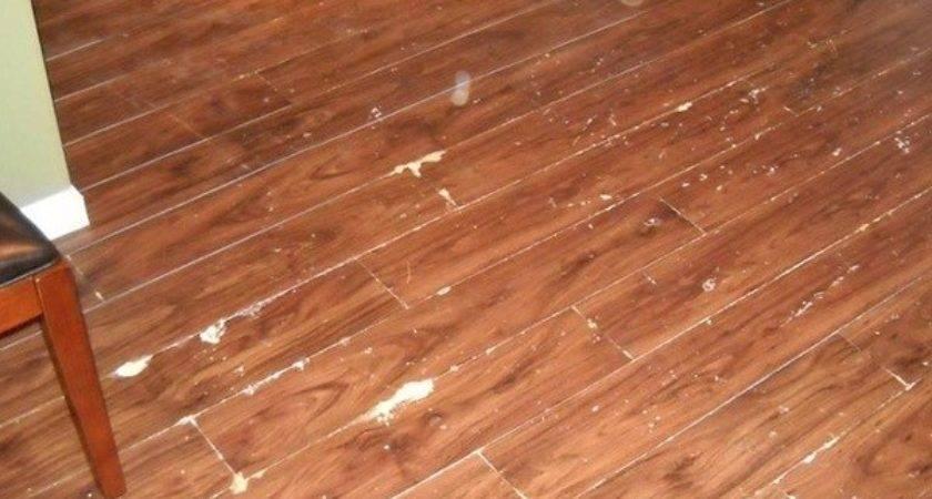 Best Wood Look Vinyl Flooring