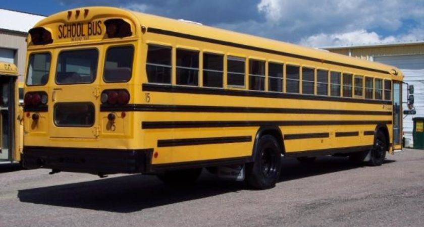 Bluebird All American Used Bus