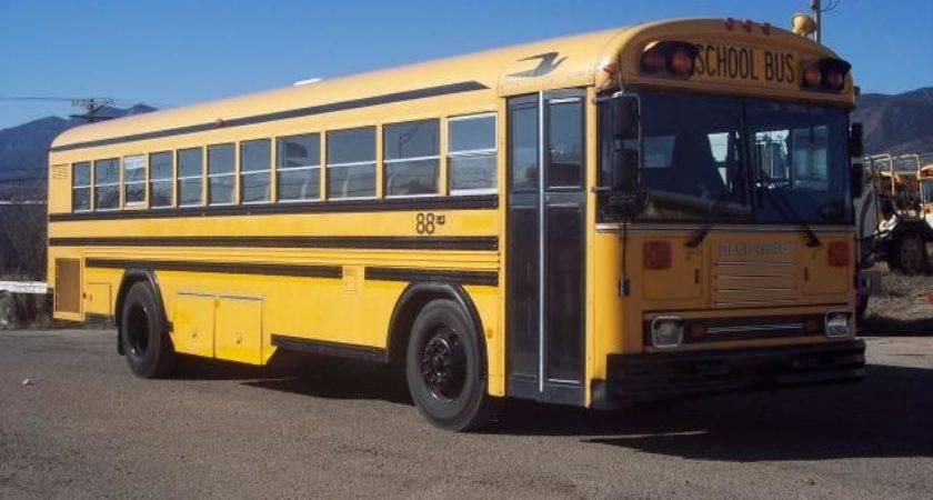 Bluebird Used Bus