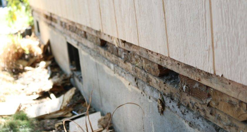 Brian Life Replace Rotted Siding