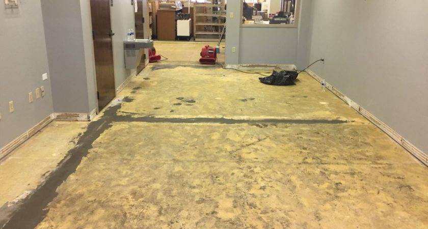 Carpet Replacement Ziegler Carpets Demolition