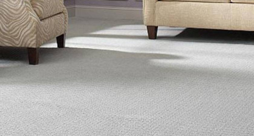 Cheap Carpet Michigan Ideas