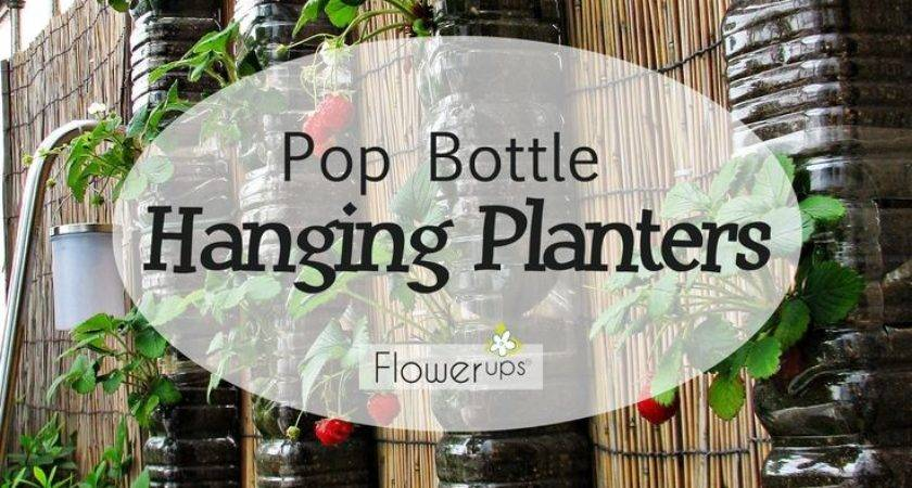 Diy Hanging Planters Made Pop Bottles Tutorial