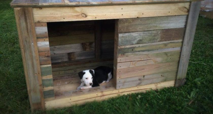 Diy Pallet Dog House Furniture