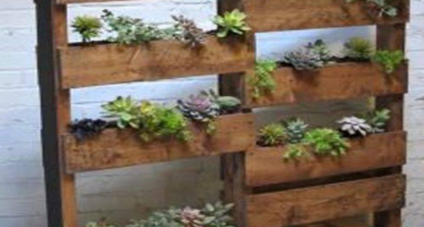 Evolved Hawaii Wood Pallet Designs