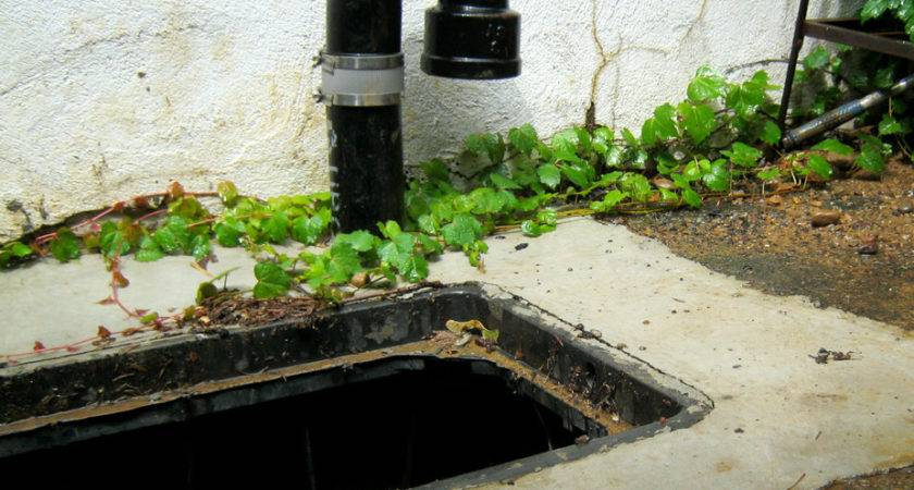 Find Sewer Trap Locate House Drain Cleaning