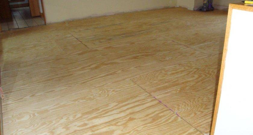 Finished Plywood Flooring Floor Your