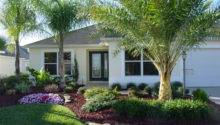 Florida Garden Landscape Ideas Photograph Rons Landscaping