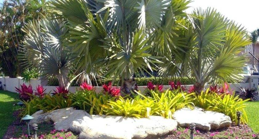 Florida Landscaping Ideas Front House South