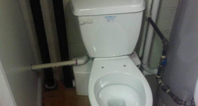 Flush Bathroom System Web Value