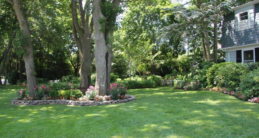 Garden Ideas Around Trees Perfect Home Design