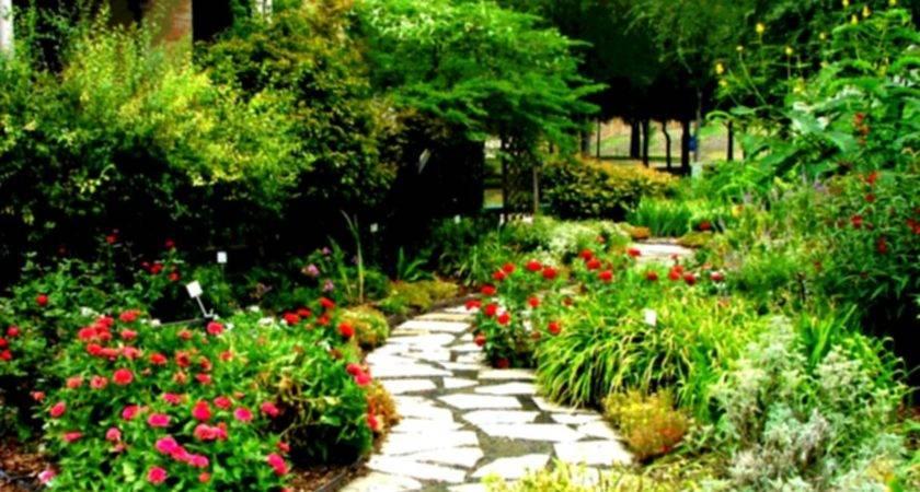 Home Landscaping Design Interior Beautiful Yard Homelk