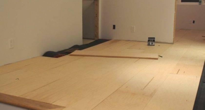 Ideas Plywood Floors Stained