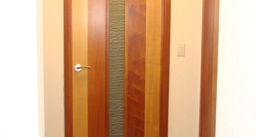 Inspiring Interior Home Doors Modern