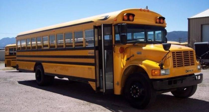International Bluebird Used Bus