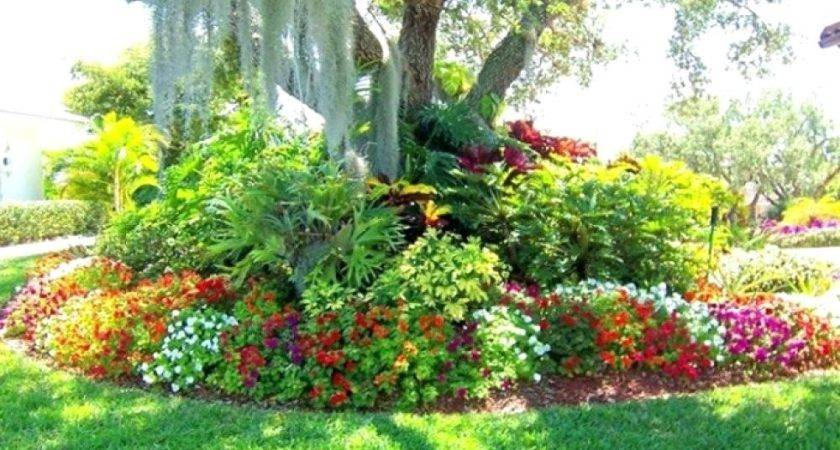 Landscape Ideas Around Trees Landscaping
