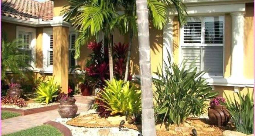 Landscape Ideas Florida Dress Your Driveway