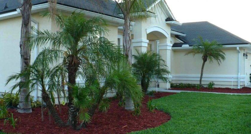 Landscape Ideas Florida Wow Lush