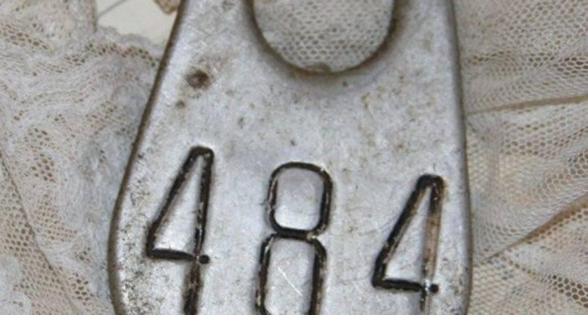 Large Metal Cow Tag Numbers Vintagesupplyco Etsy