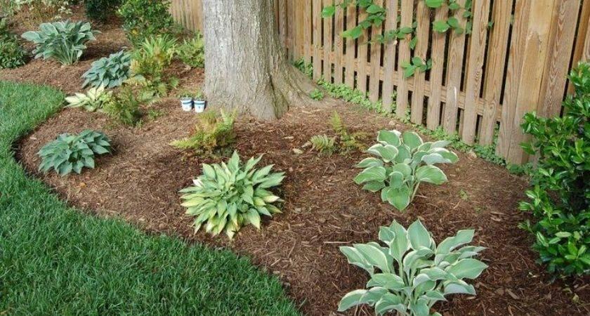 Low Maintenance Landscaping Ideas