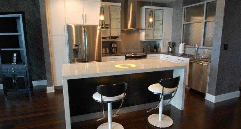 Modern Contemporary Bachelor Pad Kitchen