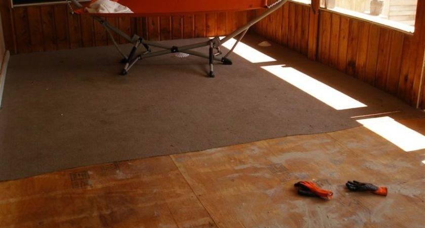 Paint Plywood Subfloor