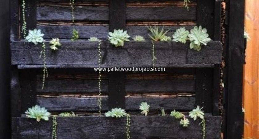 Pallet Projects Your Inspiration Wood