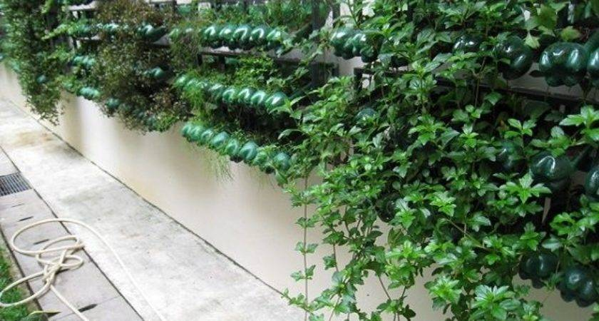 Plastic Bottle Vertical Garden Ideas Soda