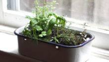 Portable Kitchen Window Herb Garden