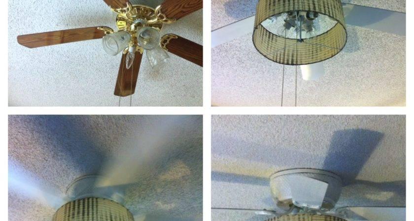 Random Anny Painting Ceiling Fan Blades