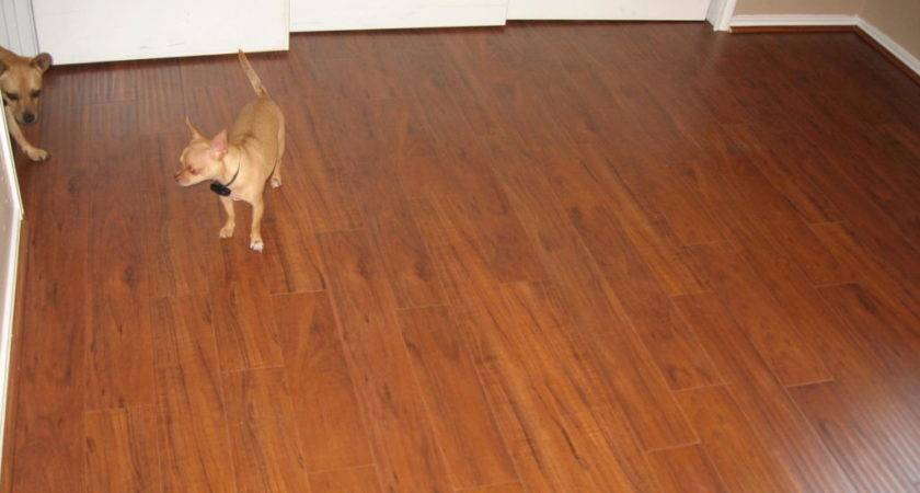 Replace Carpet Hardwood Cost Review