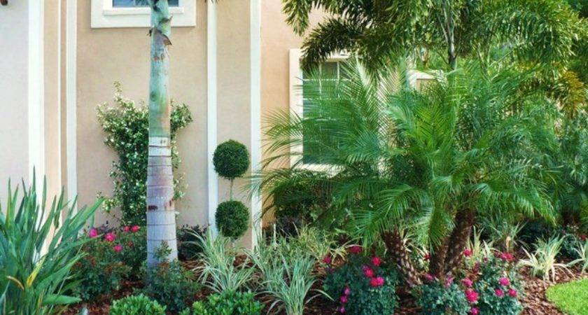 South Florida Tropical Landscaping Ideas Car Interior Design
