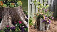 Tree Stump Garden Decor Colorful Flowers