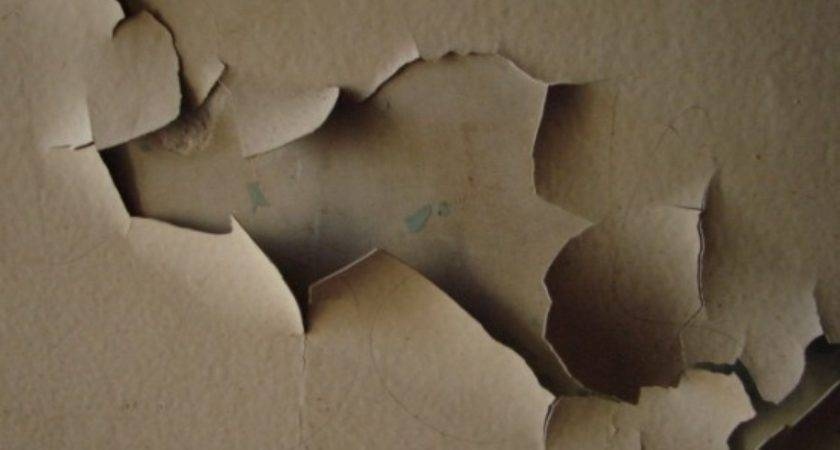Ugly House Paint Help Precision Property Restoration