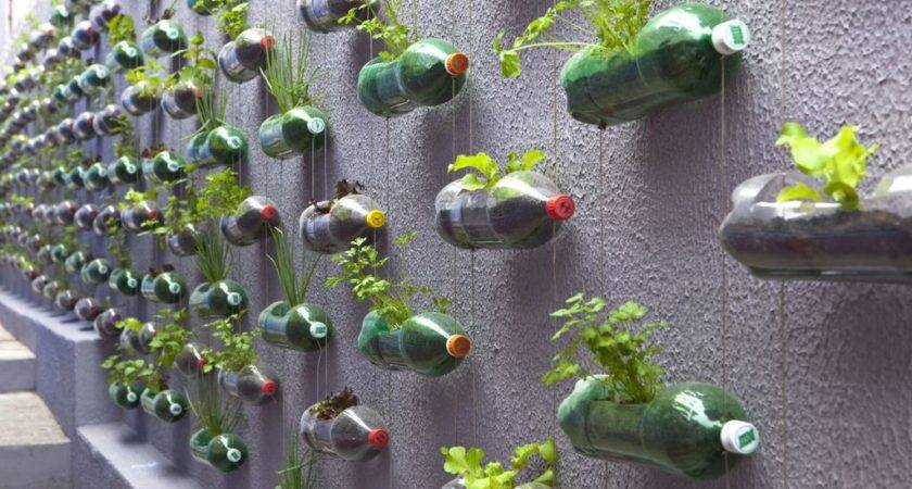 Urban Vertical Garden Built Hundreds Recycled
