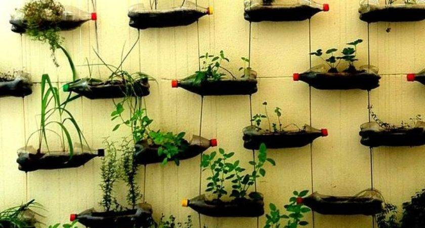 Vertical Garden Soda Bottles Eco