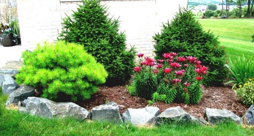 Wonderful Green Rock Landscaping Design Ideas